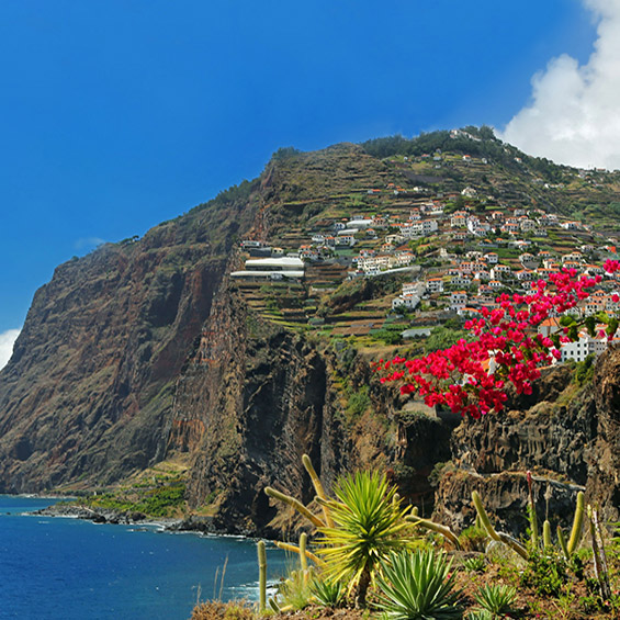 Winter Sunshine in Madeira