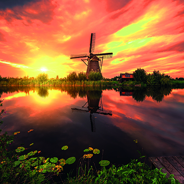 Tulips & Windmills with Titan Travel