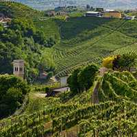 Prosecco Hills of Italy Tour with Alison